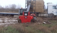 Massey Ferguson 8947 Loading in the mud and stuck